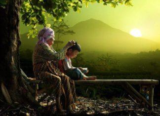 Nature n Peace1 Ana Sayfa