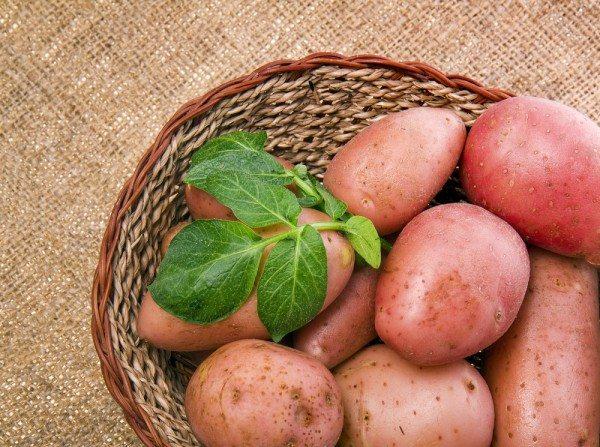 Çiğ Patates Suyunun Tedavi Edici Özellikleri