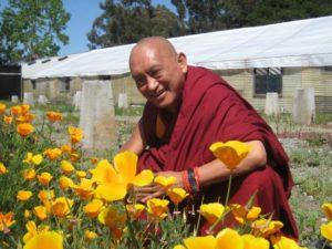 lama zopa rinpoche2