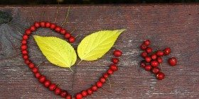 Tasavvufa Göre Aşkın Faydaları