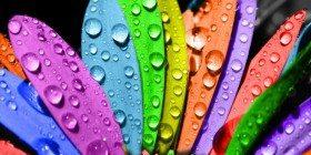 Sevdiğin Rengi Söyle Sana Kim Olduğunu Söyleyeyim