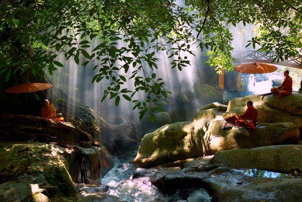 Buda'nın Yolu Nedir?