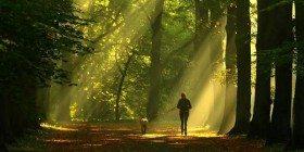 Güzellik Yürüyüşü