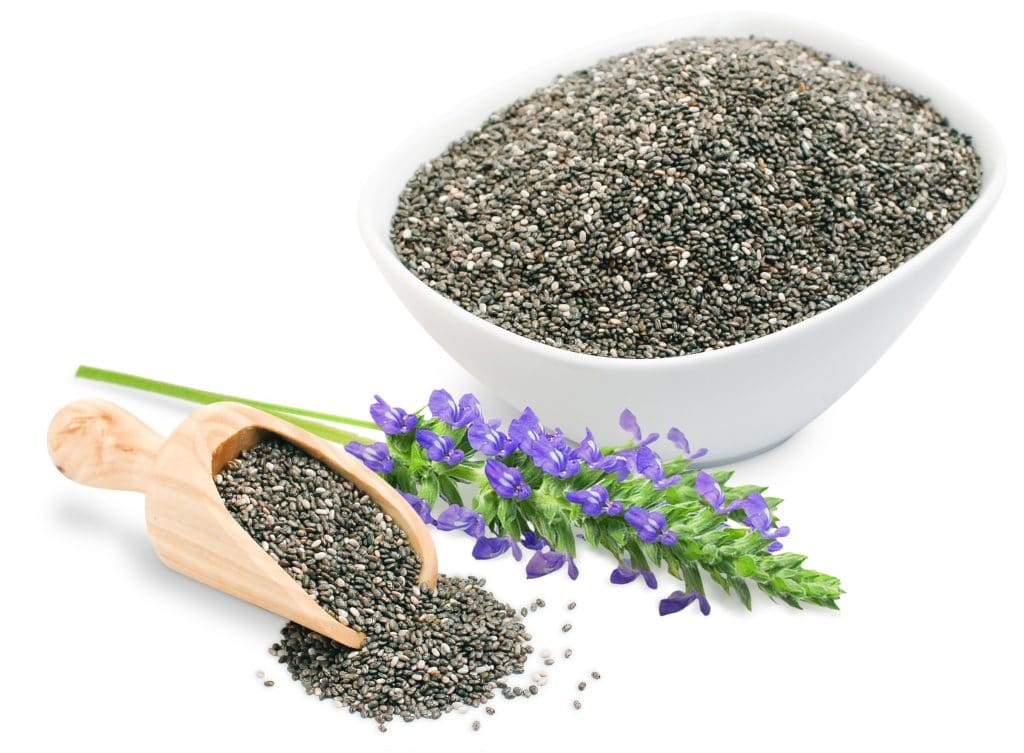 chia seeds bowl with flower Bitki Bazlı Protein Kaynakları