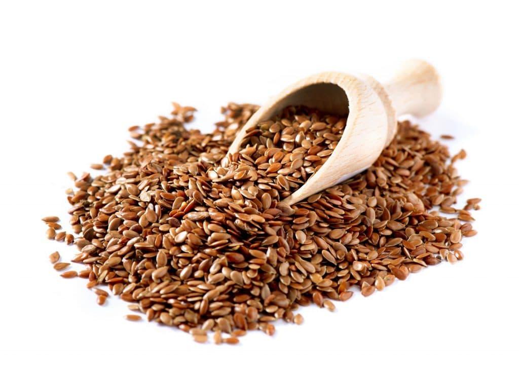flax Bitki Bazlı Protein Kaynakları